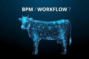 Porównanie BPM i Workflow